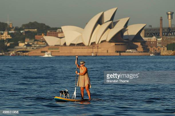 A woman paddle boards with her dog prior to PO's fleet entering Sydney Harbour on November 25 2015 in Sydney Australia The maritime event is the...