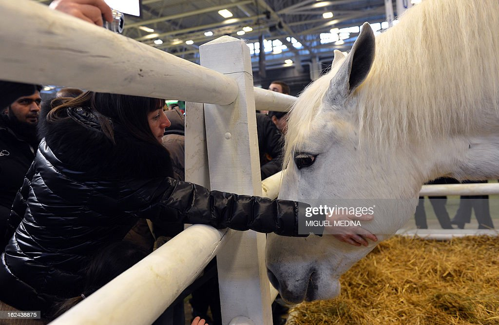 A woman pets a horse at the International Agriculture Fair of Paris at the Porte de Versailles exhibition center, on February 23, 2013 in Paris.