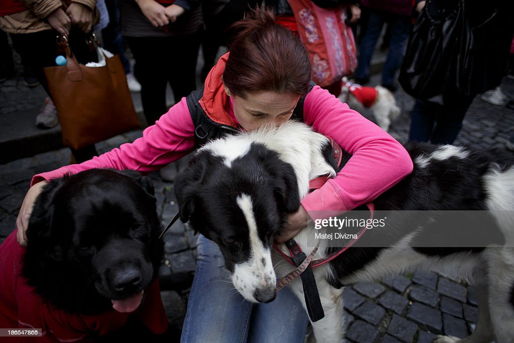 A woman pets her dogs as she attends a animal rights activists protest in the All Saints' Day on November 1, 2013 in Prague, Czech Republic. Activists were protesting against the Romania law for stray dog culling approved by Romania's constitutional court in September this year. According to estimates 65,000 stray dogs live on the streets of Bucharest.
