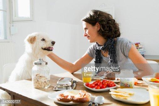 Woman petting dog at table : Stock Photo