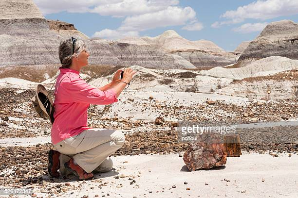 Woman photographing petrified wood.