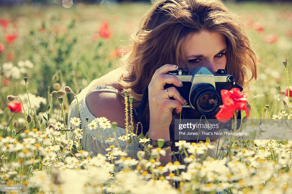 Woman photographing poppies in field : Stock Photo