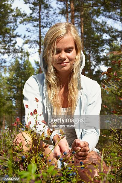 Frau abholen Beeren im Wald