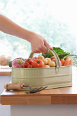 Woman placing metal basket of assorted vegetables on kitchen counter, close-up of hand