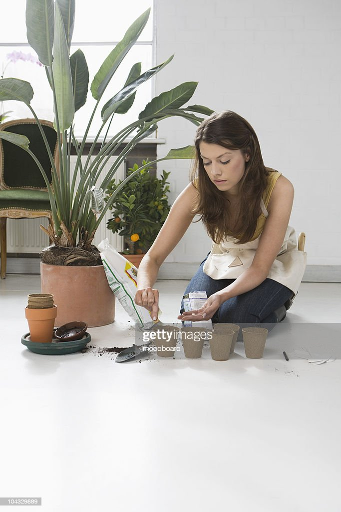 Woman planting flowers on floor in home : Stock Photo