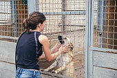 People save and help homeless dogs in animals shelter. Woman playing with animals in the cage