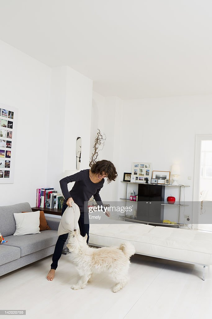Woman playing with dog in living room : Stock Photo
