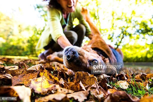 Woman playing with dog on the backyard