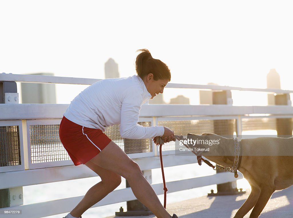 Woman playing with dog : Stock Photo