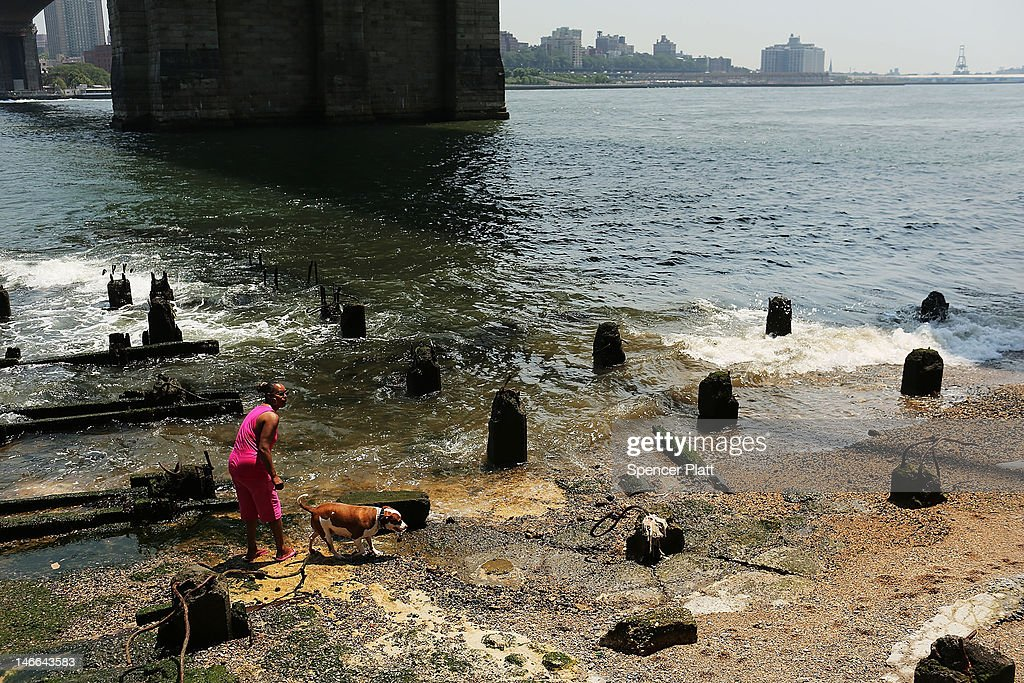 A woman plays with her dog on a small beach along the East River during record breaking heat on June 21, 2012 in New York City. New York City and much of the East Coast have been experiencing a second day of hot weather with temperatures of 98 degrees Fahrenheit (37 Celsius) being predicted in Central Park. High heat warnings and air quality alerts have been issued from Quebec to Virginia. Temperatures are not expected to cool down until the start of next week.