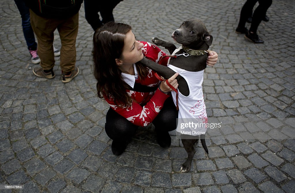 A woman plays with her dogs wearing T-shirts displaying 'Stop Killing Dogs' during an animal rights activists' protest in the All Saints' Day on November 1, 2013 in Prague, Czech Republic. Activists were protesting against the Romania law for stray dog culling approved by Romania's constitutional court in September this year. According to estimates 65,000 stray dogs live on the streets of Bucharest.