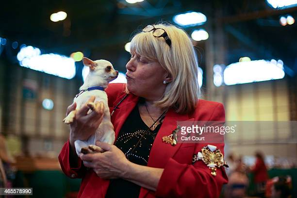A woman poses for a photograph with her Chihuahua on the fourth and final day of Crufts dog show at the National Exhibition Centre on March 8 2015 in...