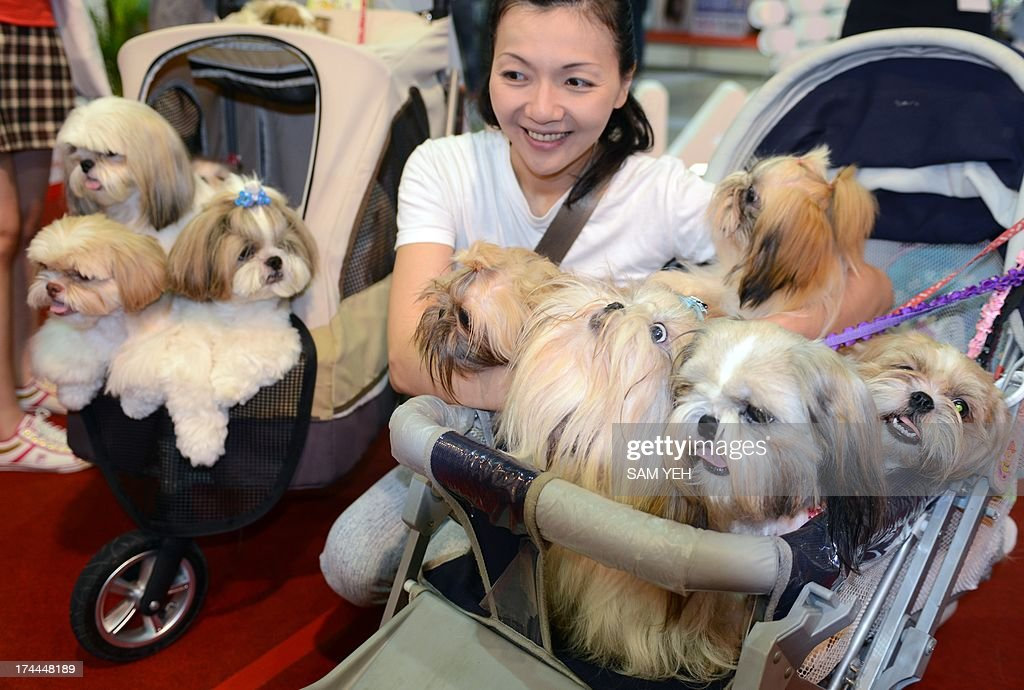 A woman poses for photos with her dogs during the annual pet show at the World Trade Center in Nankang district, Taipei on July 26, 2013. More than 150 booths for dogs and cats have been set up for the exhibition which takes place from July 26-29. AFP PHOTO / Sam Yeh