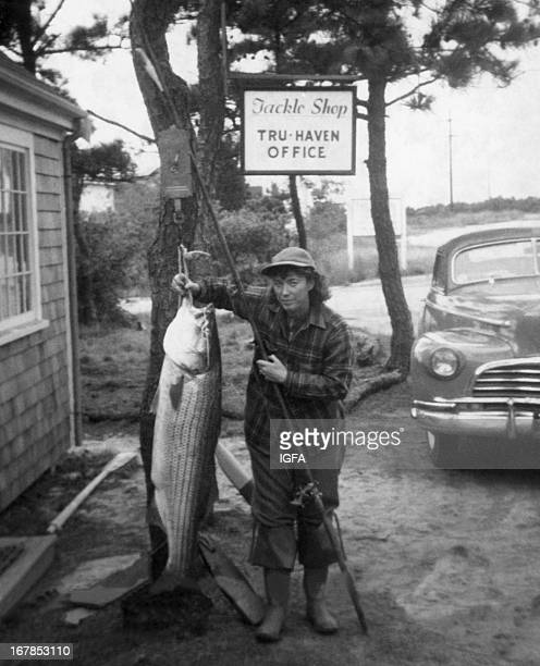 fishing tackle shop stock photos and pictures | getty images, Fishing Rod