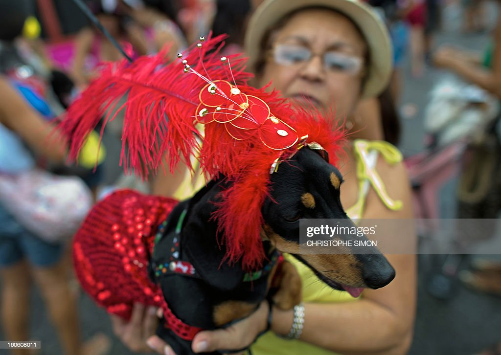 A woman poses with her dog fancy dressed during the animals' carnival, in Copacabana beach in Rio de Janeiro on February 03, 2013.