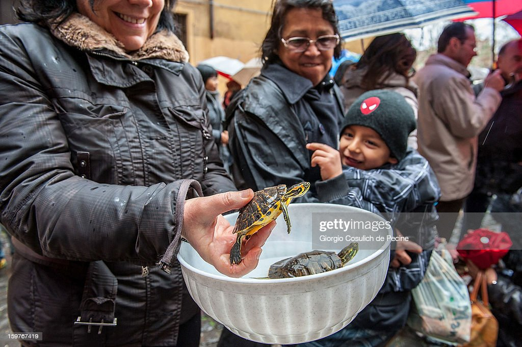 A woman poses with her pet turtles after a traditional mass for the blessing of animals at the Sant'Eusebio church on January 20, 2013 in Rome, Italy. Every year during the feast of St. Anthony the Abbot animals are blessed in countries around the world.