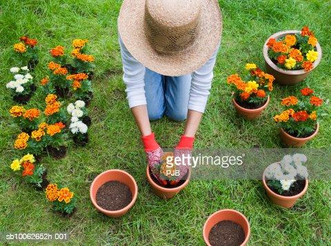 Woman potting plants in garden