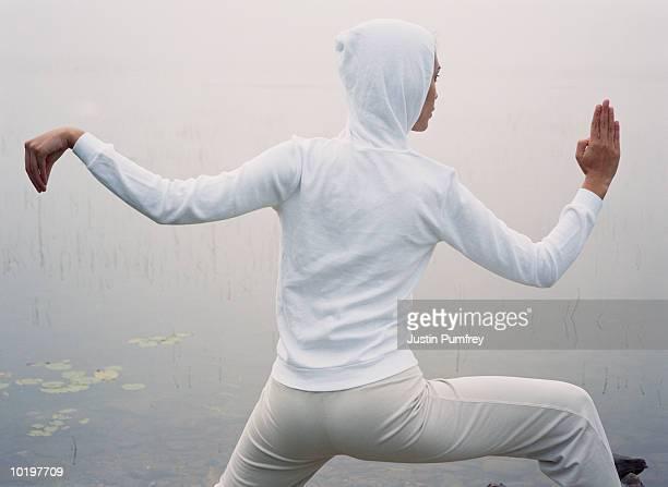Woman practising martial arts, rear view