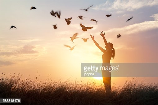 Woman praying and free bird enjoying nature on sunset background : Foto de stock