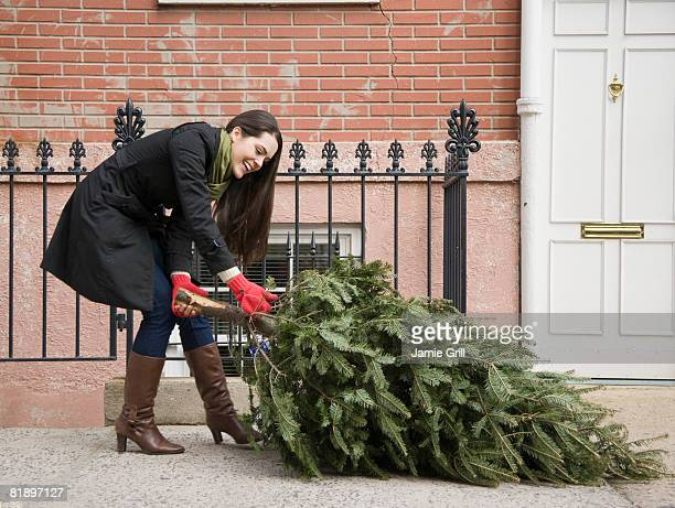 Woman pulling Christmas tree on urban sidewalk