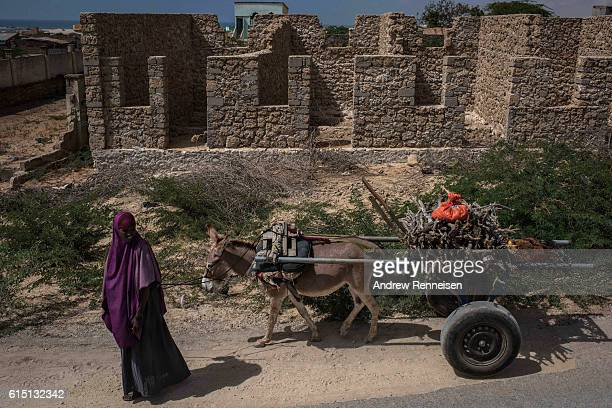 A woman pulls a donkey past the remnants of a building on October 11 2016 in Barawe Somalia The city of Barawe was a stronghold for the AlShabaab...