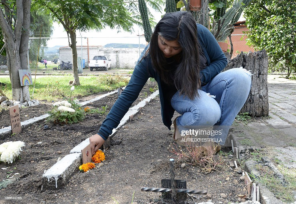 A woman puts flowers on her dog's grave at the pet cemetery in Corregidora, State of Queretaro, Mexico on November 1, 2013, the day before the commemoration of the Day of the Dead. The traditional Mexican holiday honors the dead and is celebrated annually.