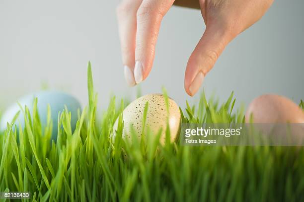 Woman reaching for decorated egg in grass