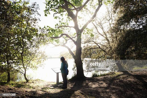Woman reading plaque in forest