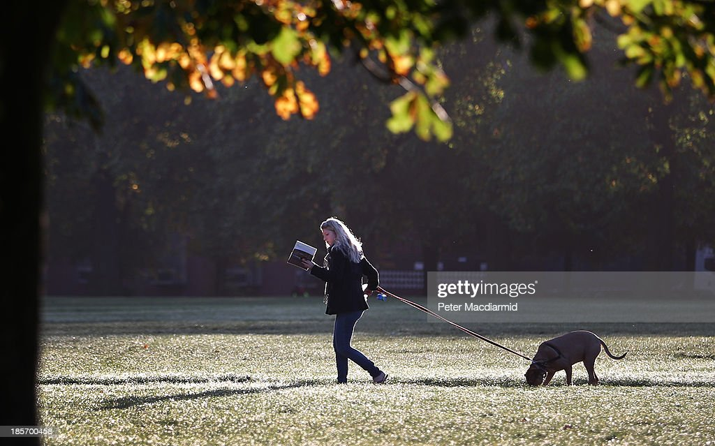 A woman reads as she walks her dog in Hyde Park on October 24, 2013 in London, England. Fine weather is expected in parts of the United Kingdom today.
