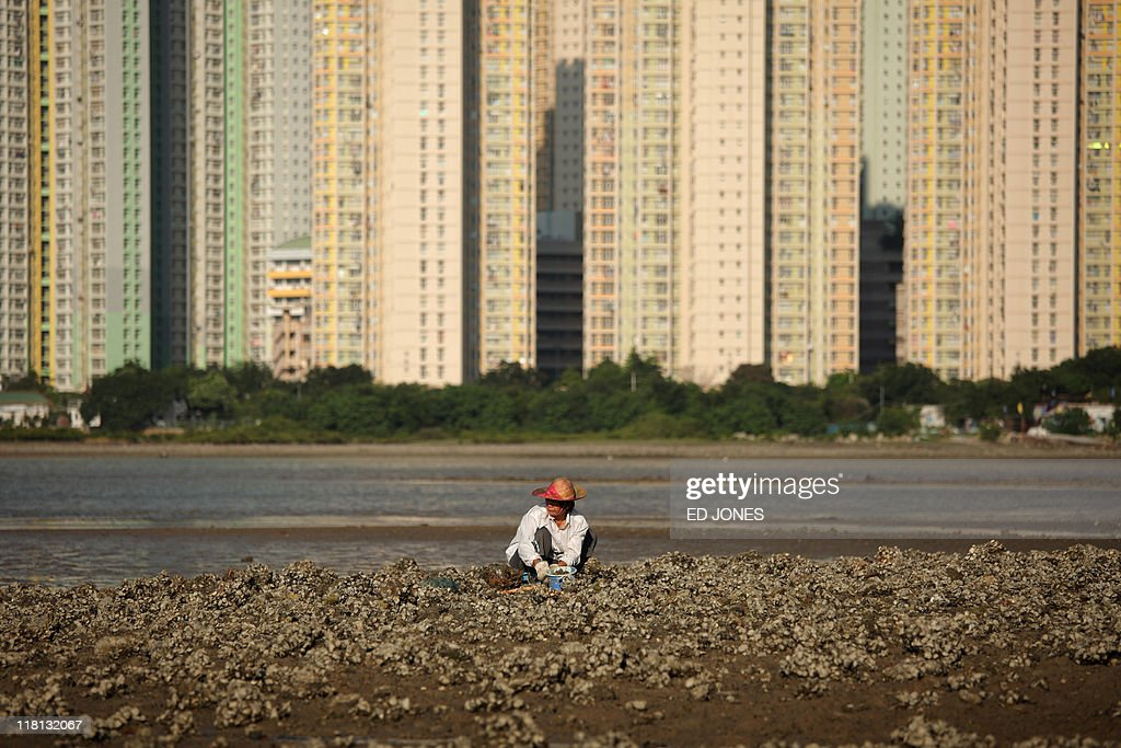 A woman rests as she digs for clams before high-rise apartments at low tide on Lantau island, Hong Kong on July 3, 2011. Whether for business or pleasure, the tradition of digging for clams is a regular draw for residents of Hong Kong's outlying islands. Bounty hunters prepared to spend hours hunched over barnacled rocks can expect a sure reward for their currency of clams from the ever-present nearby seafood establisments only too happy to serve up a hard-won catch.