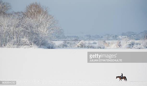 A woman rides a horse over snow covered fields near Sehnde northern Germany on January 17 2016 / AFP / dpa / Julian Stratenschulte / Germany OUT
