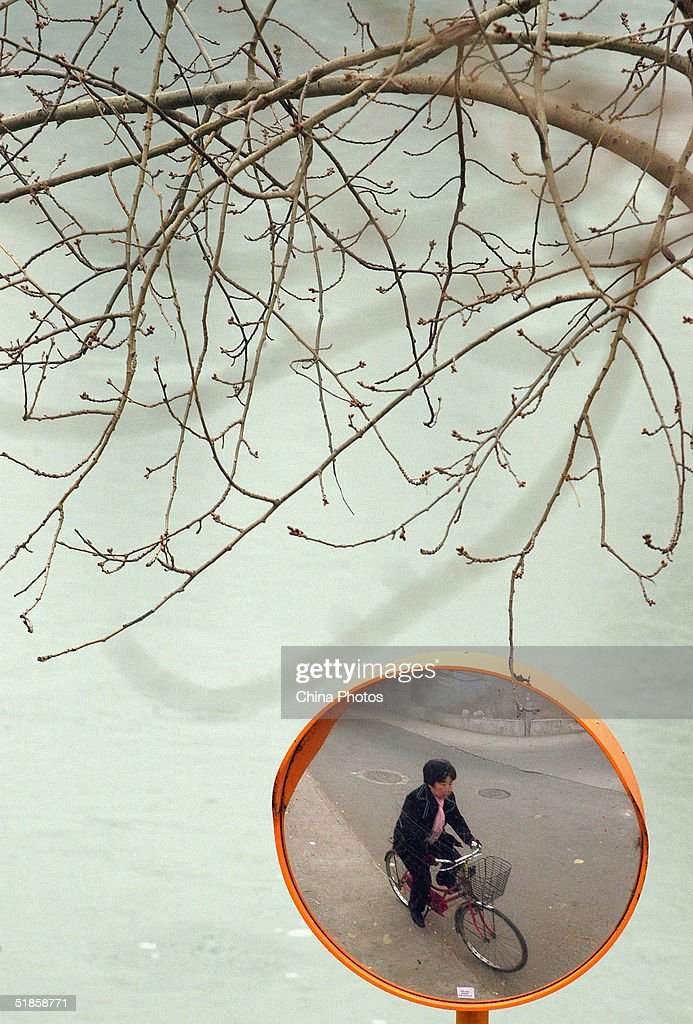 (CHINA A woman rides bicycle at a park in heavy fog December 14, 2004 in Beijing, China. The heaviest fog since winter has in some areas reduced visibility is to less than 10 meters (11 yards).