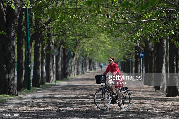 A woman rides her bicycle through horse alley in Prater park on a sunny spring day in Vienna Austria on April 152015AFP PHOTO/JOE KLAMAR / AFP / JOE...
