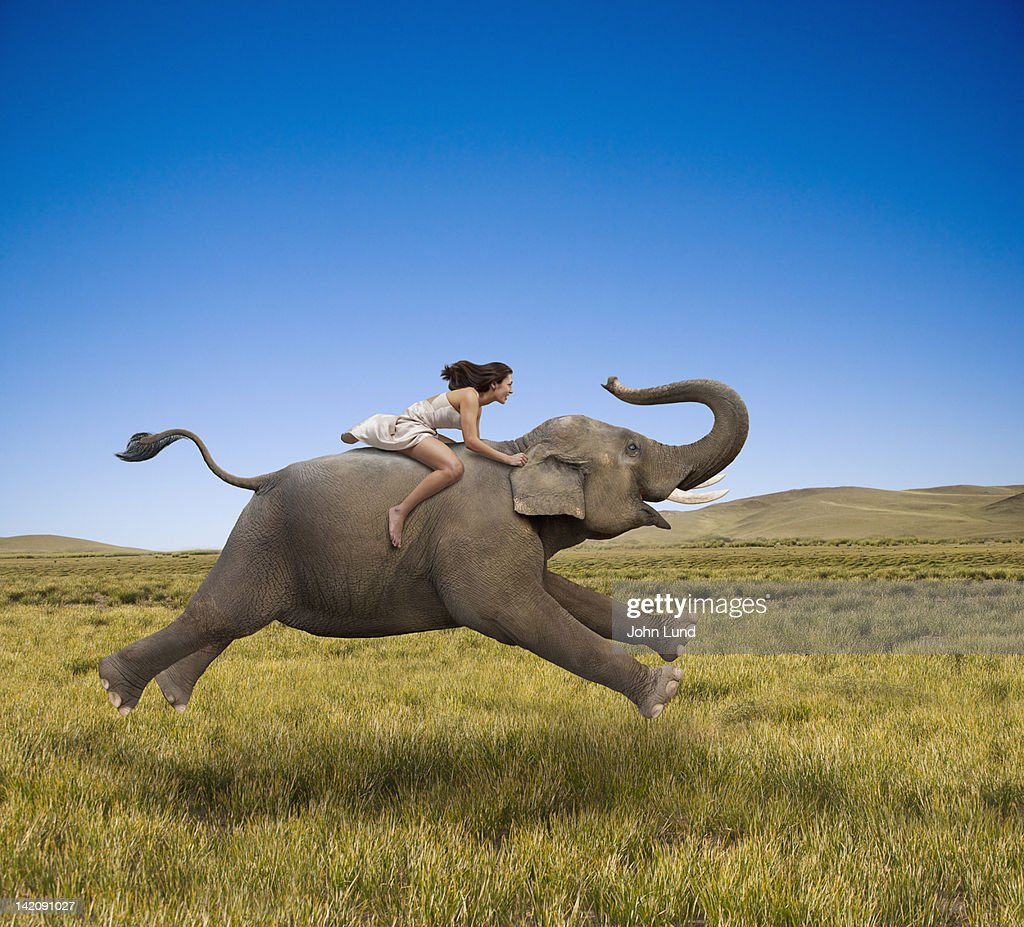 Woman Riding A Galloping Elephant : Stock Photo