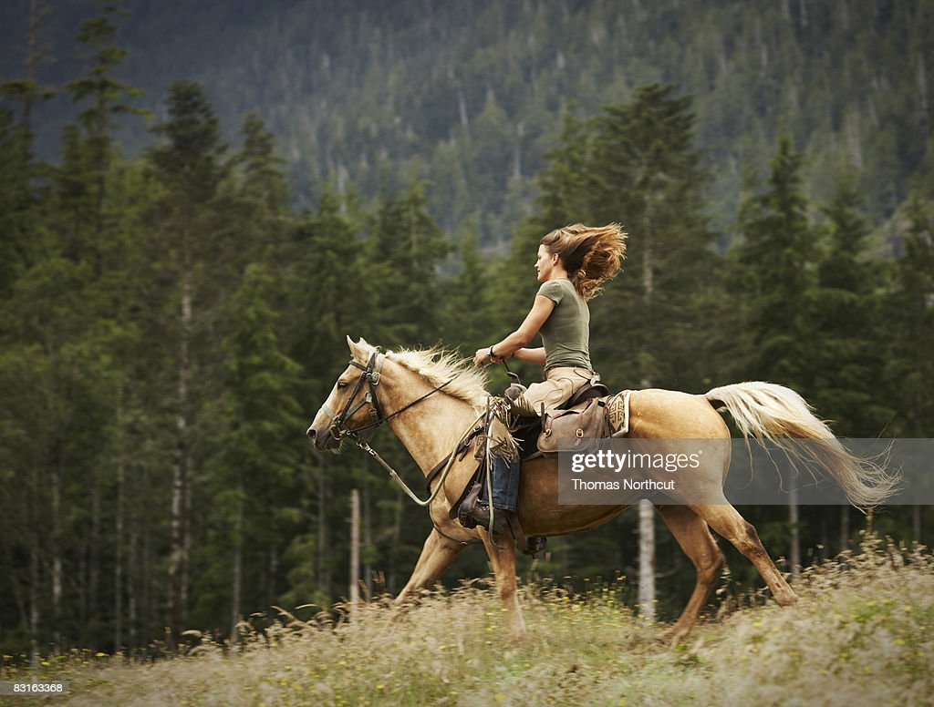 Woman riding horse through field.  : Stock Photo