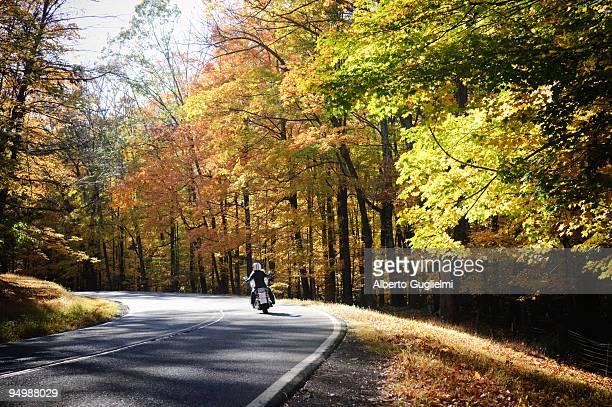 Woman riding motorbike