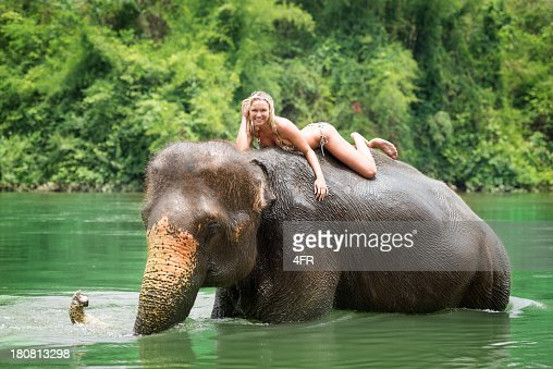 'Woman riding on an Elephant, Tropical Rain Forest' : Stock Photo