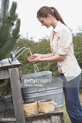Woman rinsing blueberries : Stock-Foto