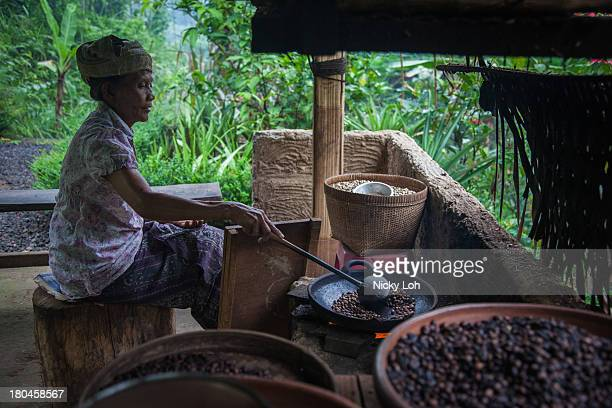 A woman roasts coffee seeds inside a 'Kopi Luwak' or Civet coffee farm and cafe on May 27 2013 in Tampaksiring Bali Indonesia World Society for the...