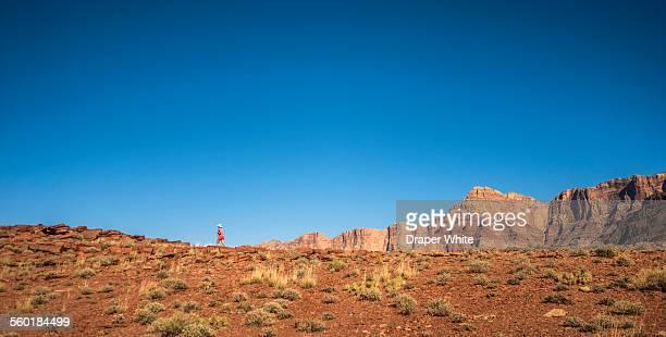 Woman running on ridge.
