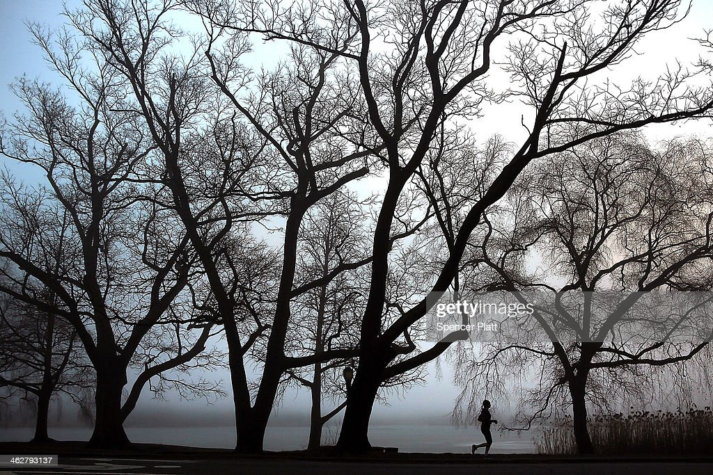 A woman runs through Prospect Park in Brooklyn on a morning with dense fog on January 15, 2014 in New York City. Travel delays were reported for commuters due to the fog as were delays at airports from Washington to New York City.