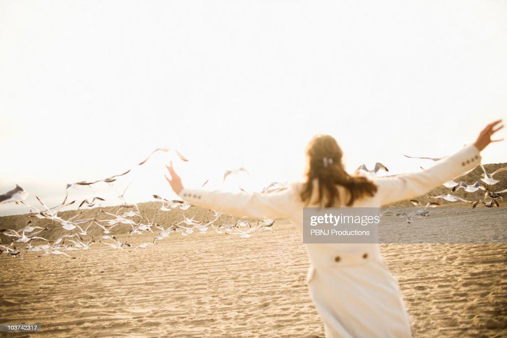 Woman scaring seagulls on beach : Stock Photo