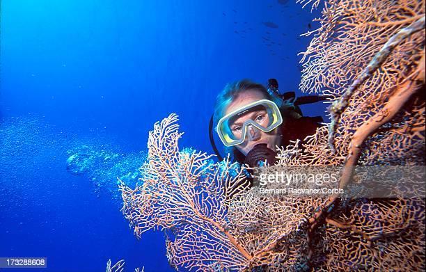 woman scuba diver behind sea fan