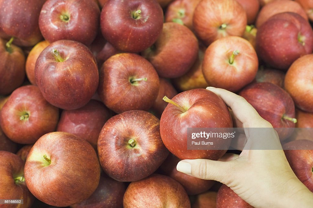 Woman Selecting an Apple From a Bunch of Apples  : Stock Photo