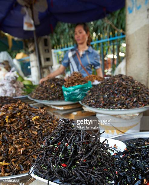 Woman selling cockroaches in Phnom Penh.