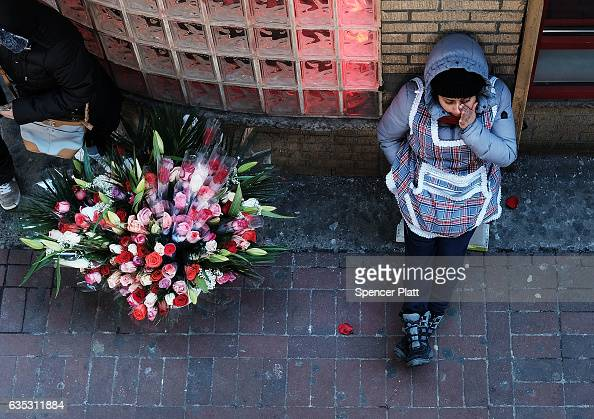 A woman sells flowers on a street corner in the Jackson Heights neighborhood with a large Latino immigrant population on February 14 2017 in the...