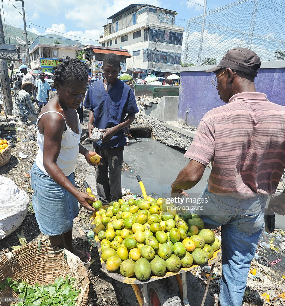 A woman sells fruit next to a canal on May 17, 2013 in Martissant, a suburb of Port-au-Prince. AFP PHOTO Thony BELIZAIRE