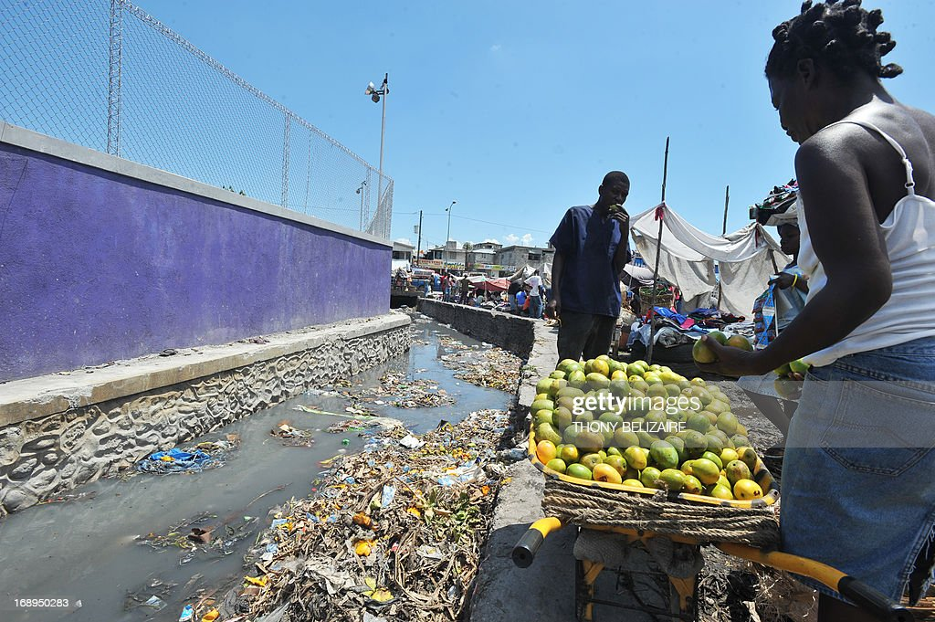 A woman sells fruit next to a polluted canal on May 17, 2013 in Martissant, a suburb of Port-au-Prince. AFP PHOTO Thony BELIZAIRE