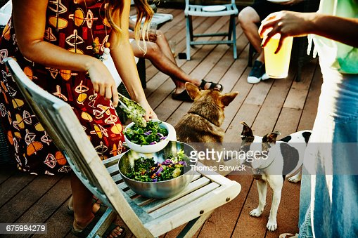 Woman serving salad to friends while dog watches