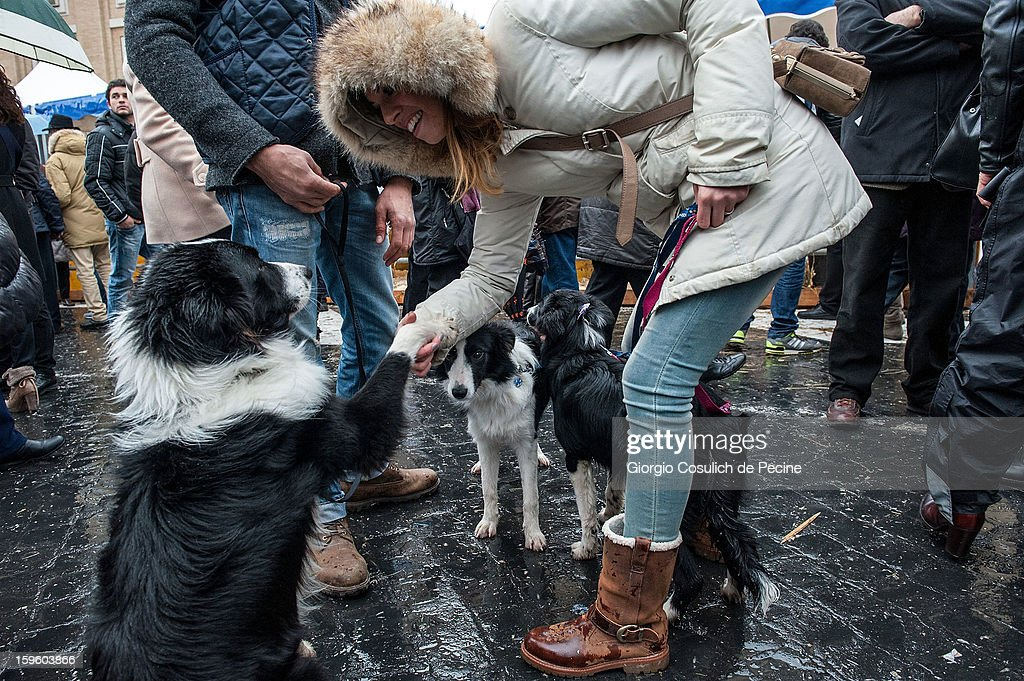 A woman shakes a dog's paw in front of the Saint Peter Basilica, during a traditional day of blessing of the animals, on January 17, 2013 in Vatican City, Vatican. Every year, during the feast of St. Anthony the Abbot, the traditional blessing of the animals is celebrated.